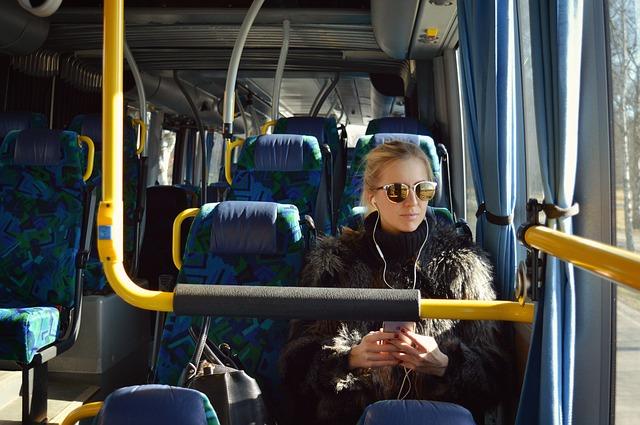 Pytnik v avtobus
